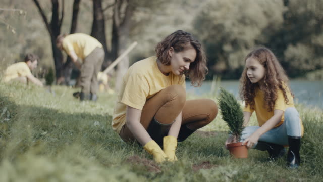 mother and daughter planting a tree by river - volunteer stock videos & royalty-free footage