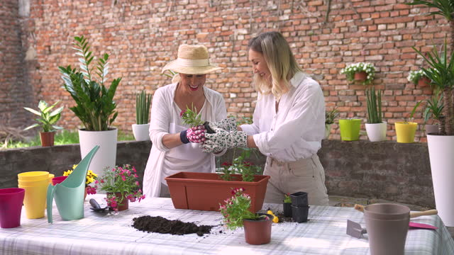 mother and daughter planting flowers together - pot plant stock videos & royalty-free footage