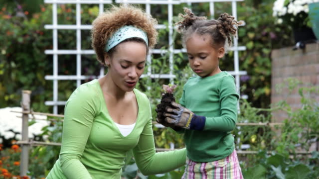 vidéos et rushes de td mother and daughter planting lettuce in vegetable garden / richmond, virginia, usa - jardiner