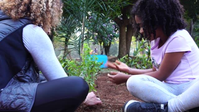 vidéos et rushes de mère et fille jeune arbre de plantation sur des sols noirs comme sauver concept monde - famille avec un enfant