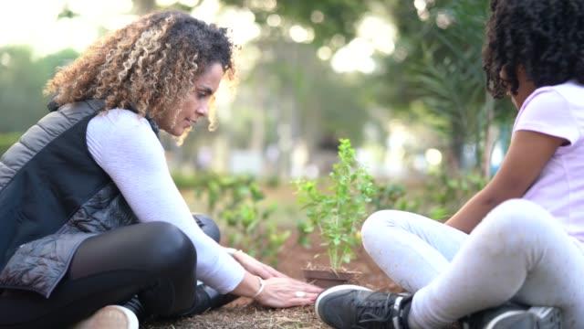 stockvideo's en b-roll-footage met moeder en dochter aanplant van jonge boom op zwarte aarde als wereld concept opslaan - tuinieren