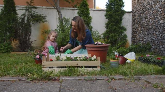 vidéos et rushes de mère et descendant en pot des fleurs dans leur cour arrière - gant de jardinage