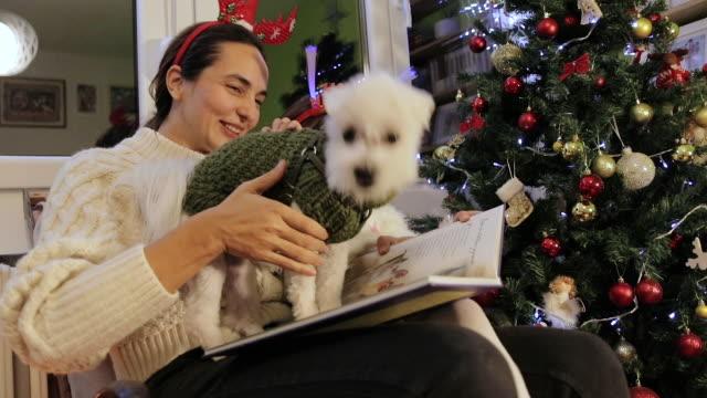 vidéos et rushes de mère et descendant affichant le conte de fées sur la veille du nouvel an - animal family