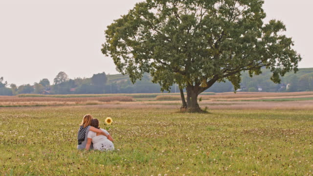 ds mother and daughter relaxing in a meadow - hugging tree stock videos and b-roll footage