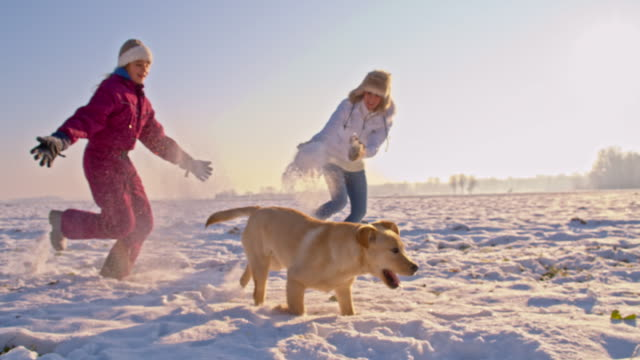 ts mother and daughter running with dog in snow - vinter bildbanksvideor och videomaterial från bakom kulisserna