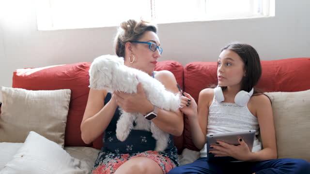 vidéos et rushes de mère et fille s'asseyant sur le sofa exécutant des activités utilisant l'appareil numérique. - young animal