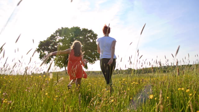 slo mo mother and daughter skipping in the meadow - skipping along stock videos & royalty-free footage