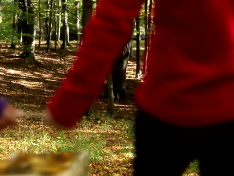 mother and daughter walking in a forest stockholm sweden. - gemeinsam gehen stock-videos und b-roll-filmmaterial