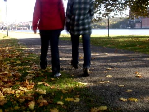 mother and daughter walking in a park sweden. - gemeinsam gehen stock-videos und b-roll-filmmaterial