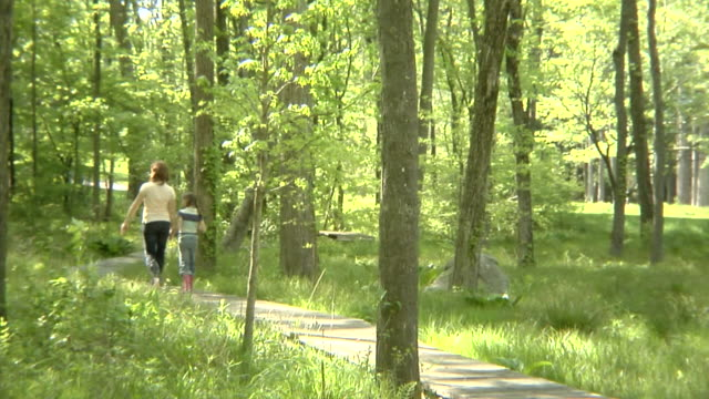vídeos de stock e filmes b-roll de ws mother and daughter (6-7 years) walking through forest on boardwalk, rear view / bedford hills, new york - 6 7 years
