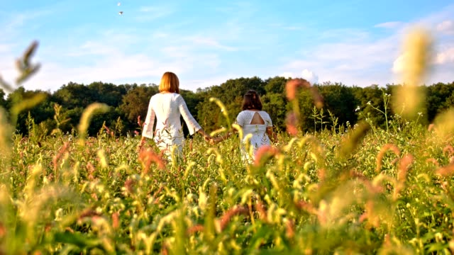 slo mo mother and daughter walking through high grass - slovenia meadow stock videos & royalty-free footage