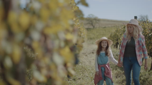 mother and daughter walking through vineyard - hat stock videos & royalty-free footage