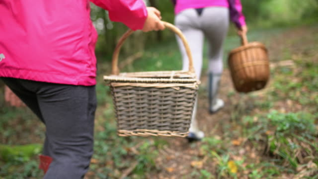 ms mother and daughter with baskets in forest - foraging stock videos & royalty-free footage