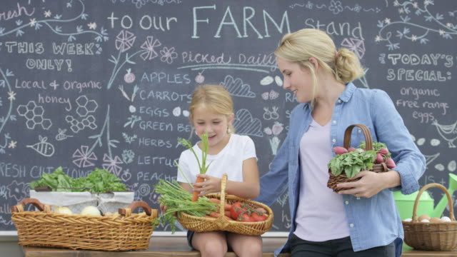 mother and daughter working at farm stand - organic stock videos & royalty-free footage