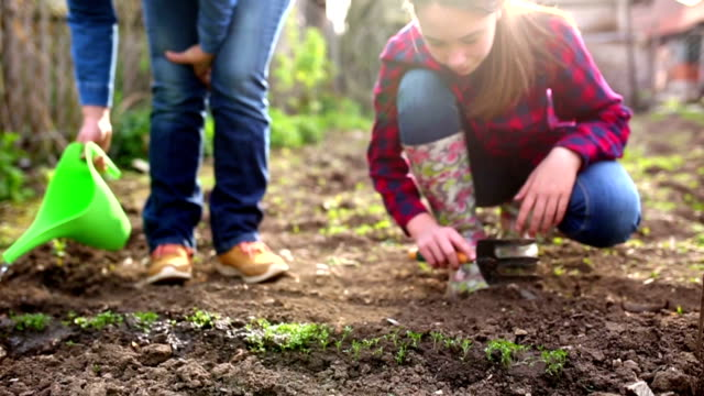 mother and daughter working in garden - community stock videos & royalty-free footage