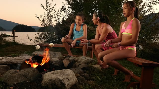 mother and daughters toasting marshmallows at campfire - marshmallow video stock e b–roll