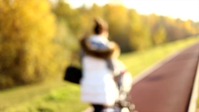 mother and her baby in a park - pushchair stock videos & royalty-free footage