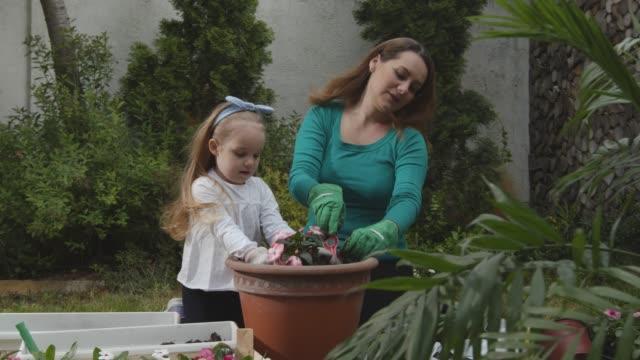 vidéos et rushes de mère et sa fille en bas âge appréciant tout en potant des fleurs ensemble - gant de jardinage