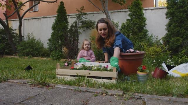 vidéos et rushes de mère et sa fille en bas âge en pot des fleurs dans leur cour arrière ensemble - gant de jardinage