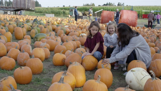 Mother and her Two Daughters Choosing Pumpkins