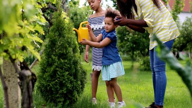 母と子供は常緑の木に水をやります - 水撒き点の映像素材/bロール