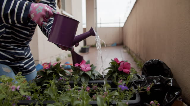 mother and son are watering flowers on balcony - balcony stock videos & royalty-free footage