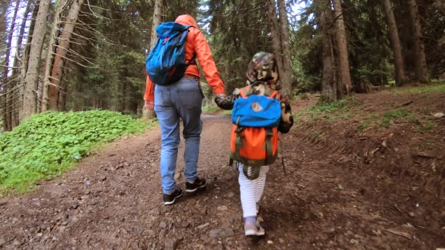 mother and son exploring a mountain - eco tourism stock videos & royalty-free footage