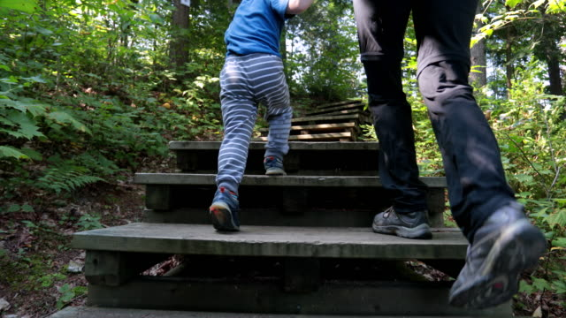 mother and son exploring forest on hiking trail - sentiero video stock e b–roll