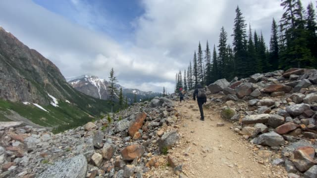 mother and son hiking at mount edith cavell, jasper, alberta, canada - national park stock videos & royalty-free footage