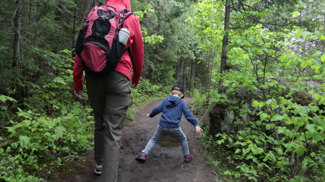 mother and son hiking in forest in summer - camping stock videos & royalty-free footage