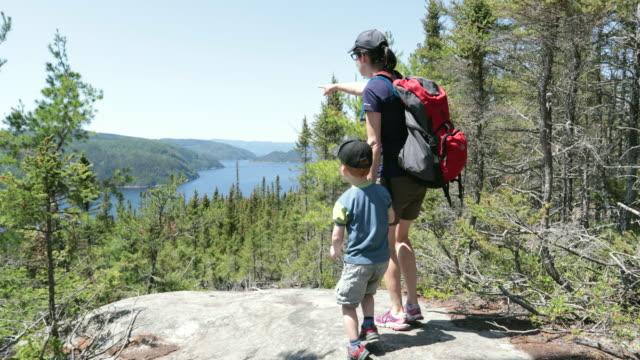 mother and son hiking in forest in summer - hiking stock videos & royalty-free footage
