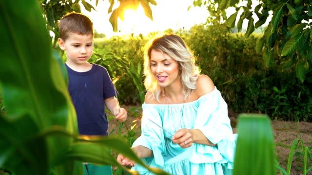 vídeos y material grabado en eventos de stock de madre e hijo sosteniendo destellos en la naturaleza - son