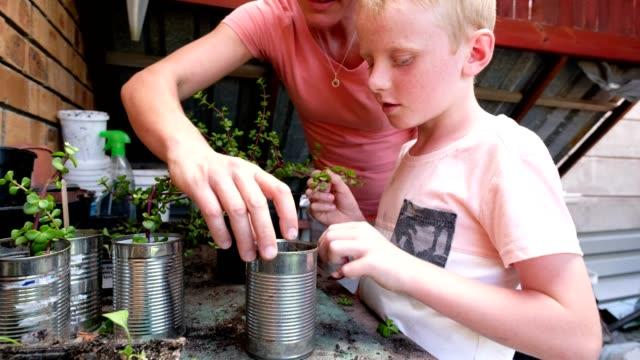 vídeos de stock e filmes b-roll de mother and son planting out some water wise plants - colocar planta em vaso