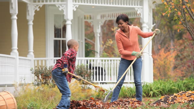 ms td mother and son (6-7) raking leaves in front yard of home / richmond, virginia, usa. - chores stock videos & royalty-free footage