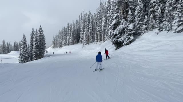 mother and son skiing in colorado - inquadratura dalla sciovia video stock e b–roll