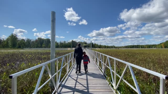 mother and son walking on floating walkway in summer - parc national stock videos & royalty-free footage