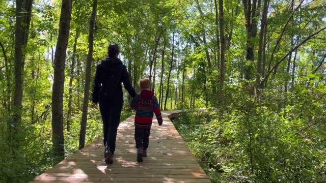 mother and son walking on wooden footpath or bridge in summer - copy space stock videos & royalty-free footage