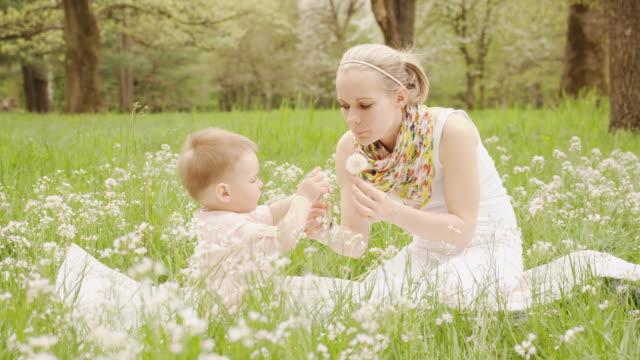 vídeos de stock e filmes b-roll de mãe e criança pequena filho mandar dente-de-leão - bebés meninos