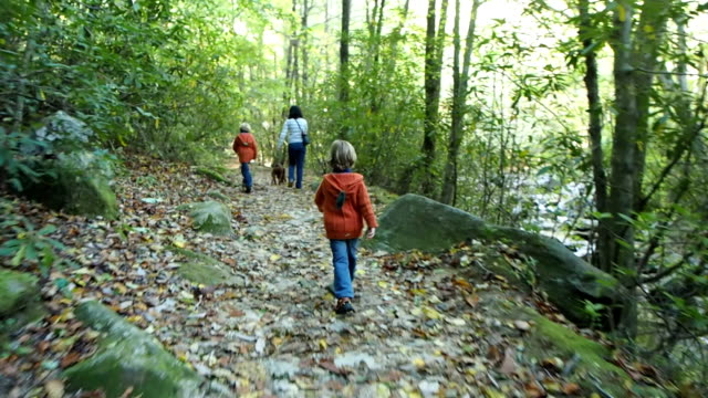 Mother and Two Boys Hiking In The Woods