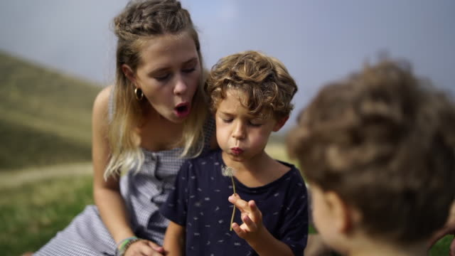 mother and two children playing with flowers on mountain - vorschulkind stock-videos und b-roll-filmmaterial