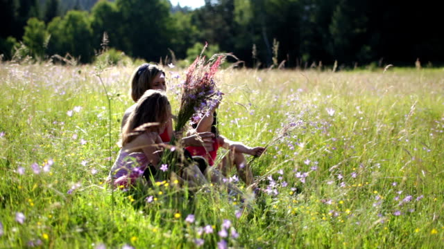 hd - mother and two daughters on meadow picking flowers - picking stock videos & royalty-free footage