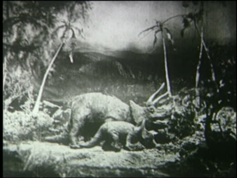 b/w mother + baby triceratops eating in jungle - anno 1925 video stock e b–roll