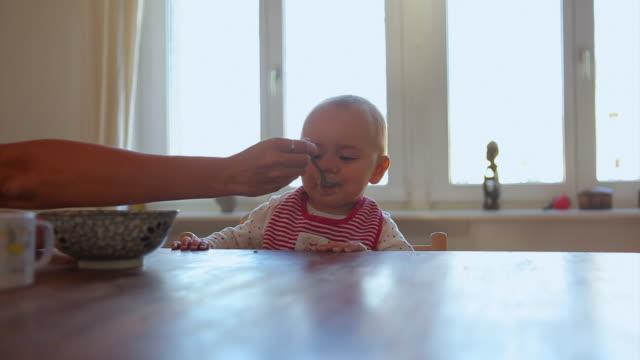vídeos y material grabado en eventos de stock de ms mother feeding baby daughter (6-11 months) at dining table, berlin, germany - 6 11 months