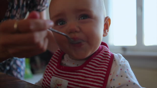 cu selective focus mother feeding baby daughter (6-11 months) at dining table, berlin, germany - feeding stock videos & royalty-free footage