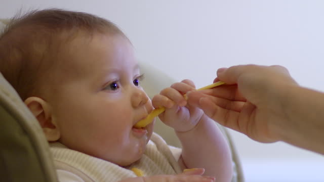cu mother feeding homemade food to baby girl with spoon / ann arbor, michigan, united states - spoon stock videos & royalty-free footage