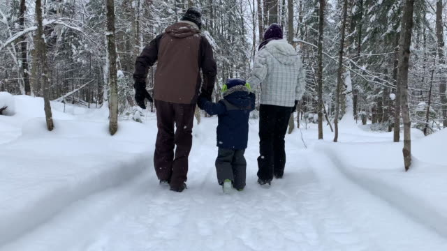 mother, grand father and son exploring forest on hiking trail in winter - day stock videos & royalty-free footage