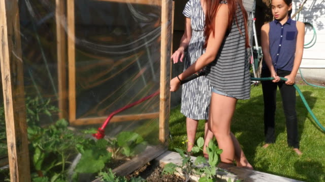 MS Mother helping daughters water garden in backyard of home on summer evening