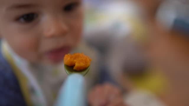 vídeos de stock, filmes e b-roll de matriz que prende a colher de bebê com cenoura pura e que tenta alimentar seu bebé nervoso - comida de bebê