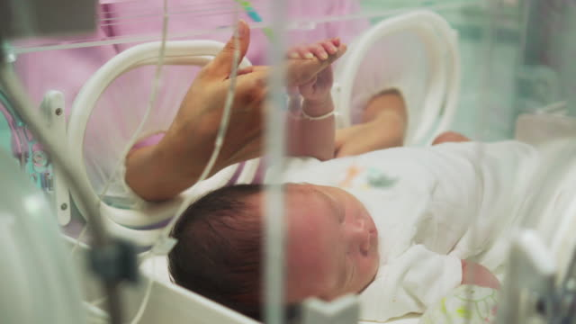 mother holding newborn baby's finger  in incubator - baby stock videos & royalty-free footage