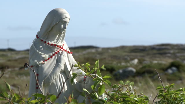mother mary statue near field - effigy stock videos & royalty-free footage